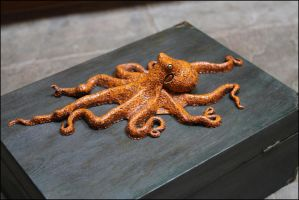 Octopus3 by RandyHand