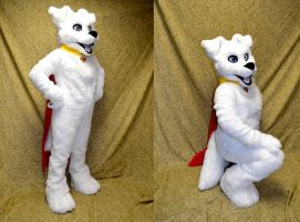 Krypto the Superdog by temperance