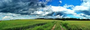 Panoramic: Fields overlook... by Pharaun333