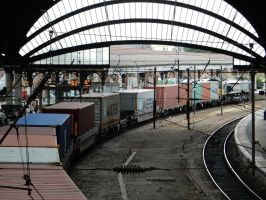 Freightliner Container Train Passing Through York by rlkitterman
