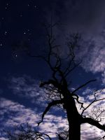 Day Vs. Night Sillhouette 2 by Chadsword