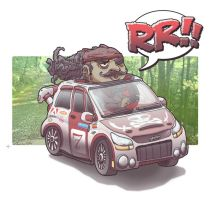 RR by galvo