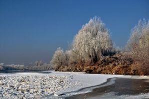 in winter.. by Lk-Photography
