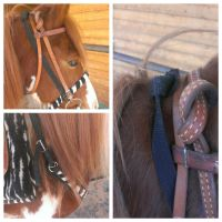 Got Big Tack? by OccasionalSuicide