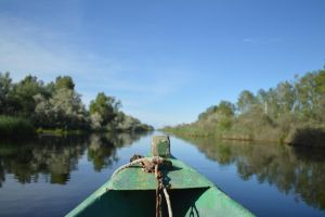 Danube Delta by The-shivering-leaf