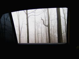 Through the window by sef1989
