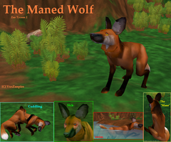 Maned Wolf by ZooTycoon2Club
