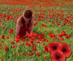 Lest we forget by cazcastalla