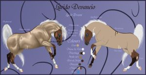 Lucido Devaneio Reference Sheet by Paardjee