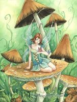 Book art Fairies like Shrooms by MeredithDillman
