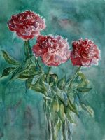 Peonies by Lady-DreamArt