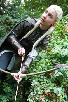 Legolas- Archer by twinfools