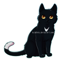 Ravenpaw by AcidNeku