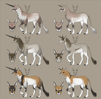 Unicorn Colour Concept -- Sexual Dimorphism by akvz