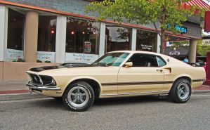 1969 Mustang Mach I by tundra-timmy