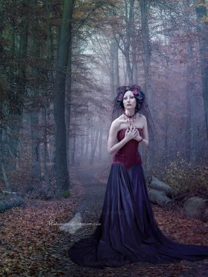 At The Heart Of The Forest by maiarcita