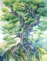 Tree of life by benu-h