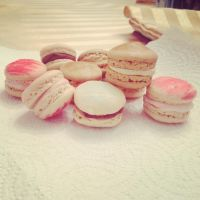 Macarons by sourskittles70
