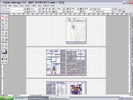 Sr. Project InDesign 2 by xRaeylx