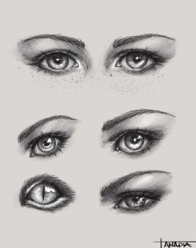 Eyes by Anadia-Chan