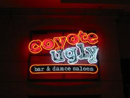 Coyote Ugly Bar Sign by grilledchicken