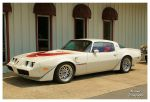 Cool White Trans AM by TheMan268