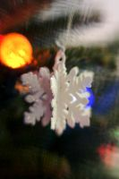 Lensbaby Parents Tree V by LDFranklin
