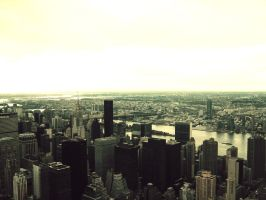 New York2 by cwiny
