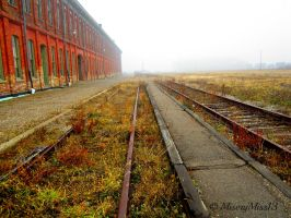 The Old Train Station... by Michies-Photographyy