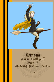 Quidditch ID by aesculus by IntricateMagic