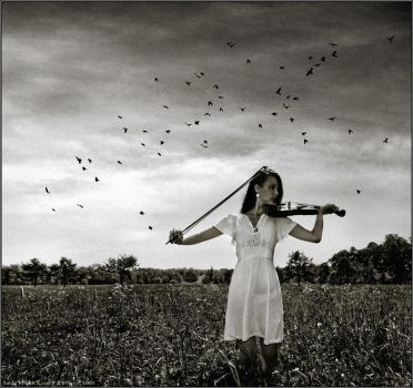Music of Life by jane-art