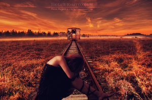 Too Late To Say Goodbye by Deorsa