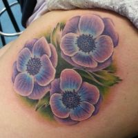 Freehand Anemones by joshing88