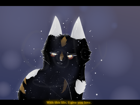 At least I keep his eyes in my Life by hollyleaf53