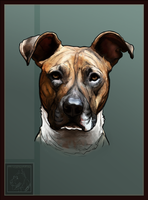 Jenna- Dog Commission -1 by Valsier