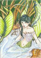 Merfae (ACEO) by Keyshe54