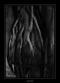 Entwined by Mr Riddles by brisbane-deviants