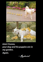 Prussia's dog by AleItaly1998