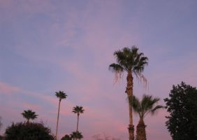 AZ Sunset 021215 01 by acurmudgeon