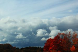 Clouds and Tree by Adeimantus