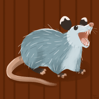 Party Opossum by HannaGeorge