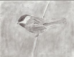 Chickadee by MechSquadron
