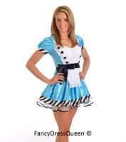 Alice in Wonderland Cosplay Costume by fancydressqueen