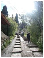 pilgrims - staircase road by coffeebugg