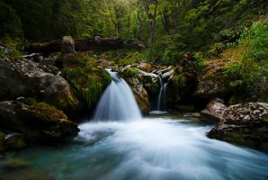 Sugarloaf Stream by mark-flammable