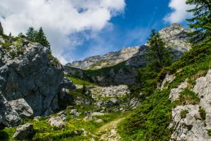 On a mountain by Photomateur