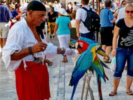 Pirate and his parrots by Drazen1804