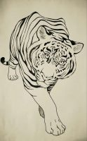 Tiger (pen and paper) by elksneedle
