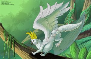 [Personal] Cockatoo Gryphon by Ulario