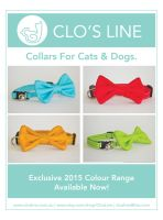New Collars for 2015 by Ardengrail